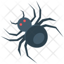 Spider Web Spider Scary Icon