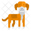 Hamiltonstovare Dog Icon