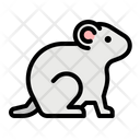 Hamster Zoology Rodent Icon