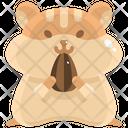 Hamster Wildlife Pet Icon