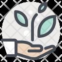 Hand Care Treatment Icon