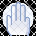 Hand Gesture Catch Icon
