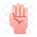 Hand Gesture Palm Icon