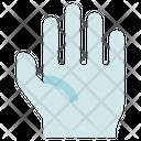 Organ Anatomy Hand Palm Icon