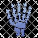 Hand Bone Bone Finger Icon
