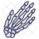 Hand Bone Icon