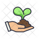 Hand Holding Leaves Icon