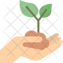 Hand Holding Plant Hand Holding Icon