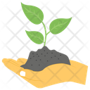 Hand Plantation Plantation Sprout Icon