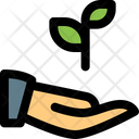 Plant Care Plant Growth Gardening Icon
