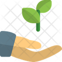 Hand To Plant Plant Care Plant Growth Icon