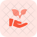 Hand To Plant Two Hand To Plant Plant Care Icon