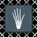 Hand Xray Icon