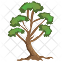 Hangman Elm Evergreen Icon