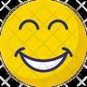 Happy Baffled Emoticon Emoticons Icon