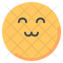 Happy Smiley Emot Icon