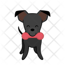 Toy Playing Dog Icon