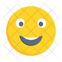 Happy Smiling Emoticon Icon