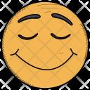 Smiley Surprised Happy Icon