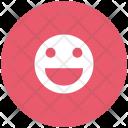 Happy Smile Smiley Icon