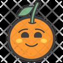 Happy Orange Icon