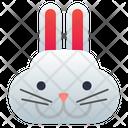 Hare Rabbit Bunny Icon