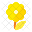 Flower Camomile Plant Icon