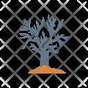 Haunted Tree Nature Icon