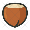 Hazelnut Nut Nutshell Icon