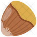 Hazelnut Nut Seed Icon