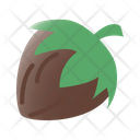 Hazelnut Fruit Healthy Icon