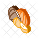 Hazelnut Nut Icon