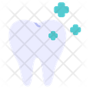 Dental Tooth Dentist Icon