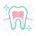 Healthy Tooth Root Healthy Tooth Healthy Icon