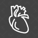 Heart Body Human Icon