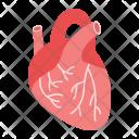 Heart Human Organ Icon