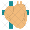 Heart Cardiac Body Icon