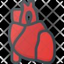 Heart Organ Health Icon