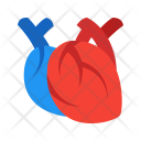 Heart Medical Icon