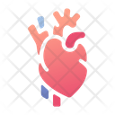 Heart Lungs Lifebeat Icon