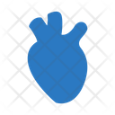 Heart Organ Body Icon