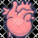 Anatomy Cardiology Organ Icon