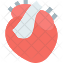 Heart Human Heart Body Part Icon