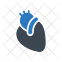 Heart Body Organ Icon