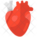 Heart Cardiac Health Cardiac Muscles Icon