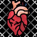 Heart Organ Body Part Icon