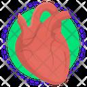 Heart Orgon Anatomy Icon