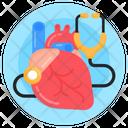 Human Heart Heart Checkup Heart Diagnose Icon