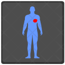 Heart Organ Man Icon