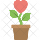 Heart Plant Spreading Icon